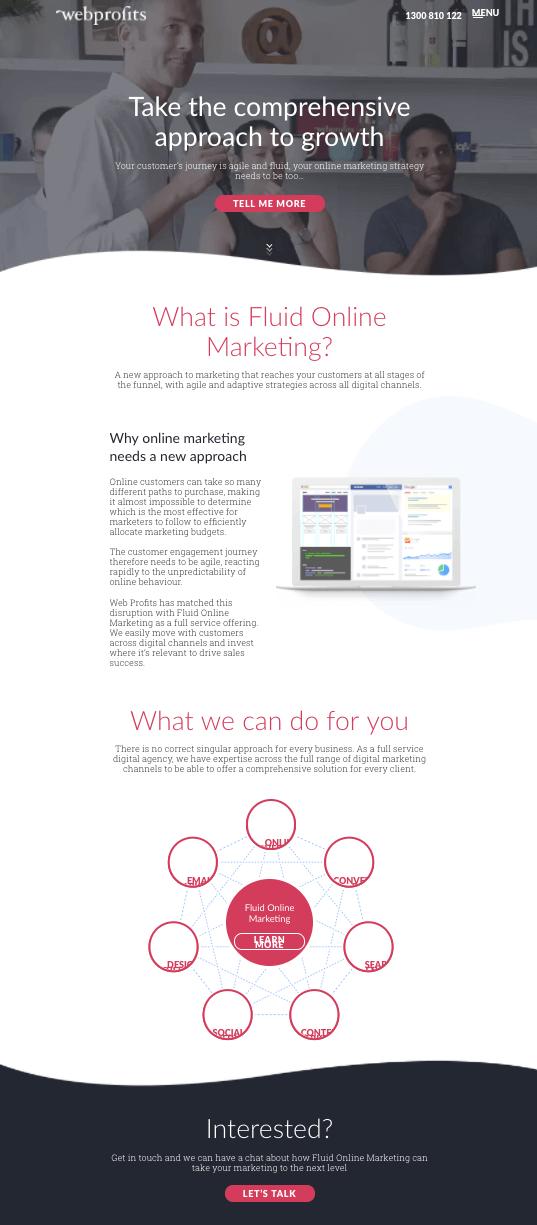 webprofits-exemplo-landing-page